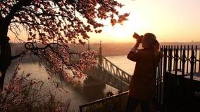 Mujer que toma a foto el paisaje urbano y el puente de la libertad sobre Danubio de la terraza de la colina de Gellert en Budapes almacen de metraje de vídeo