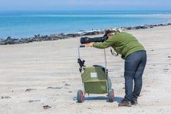 Mujer que toma imágenes de sellos en la playa de la duna de la isla Imagen de archivo libre de regalías