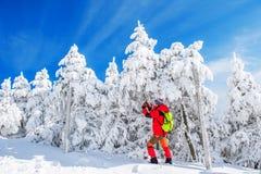 mujer que toma la foto con smartphone en las montañas en invierno fotografía de archivo libre de regalías