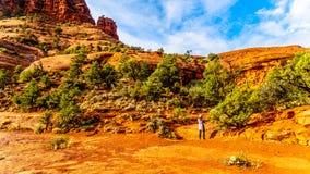 Mujer que toma una imagen de la vegetación en la roca de Bell, una de las rocas rojas famosas entre el pueblo de Oak Creek y Sedo imágenes de archivo libres de regalías