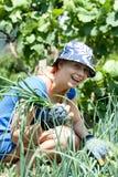 Mujer que trabaja en el jardín Fotografía de archivo