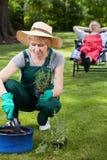 Mujer que trabaja en el jardín foto de archivo