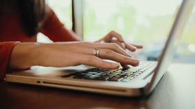 Mujer que trabaja en el ordenador portátil, ordenador en café estático