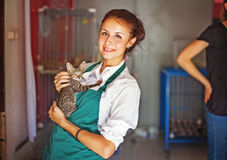 Mujer que trabaja en refugio para animales imagenes de archivo