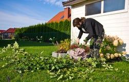 Mujer que trabaja en un jardín, cortando exceso de ramitas de plantas imagen de archivo