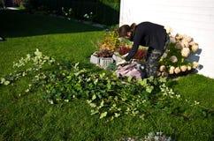 Mujer que trabaja en un jardín, cortando exceso de ramitas de plantas foto de archivo libre de regalías
