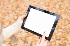 Mujer que usa la tablilla al aire libre Imagen de archivo libre de regalías