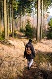 Mujer que va de excursión en el bosque Imagen de archivo