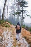 Mujer que va de excursión en el bosque Fotografía de archivo