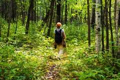 Mujer que va de excursión en el bosque Foto de archivo libre de regalías