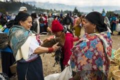 Mujer que vende un pollo en el mercado del ganado de la ciudad de Otavalo en Ecuador Fotografía de archivo