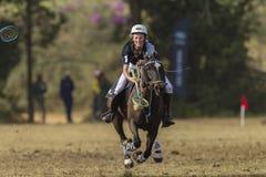 Mujer Rider Action de la Polo-cruz Fotografía de archivo