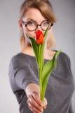 Mujer rubia con el solo tulipán Imagenes de archivo