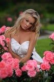 Mujer rubia en la alineada blanca que se sienta en rosas rosadas Imágenes de archivo libres de regalías