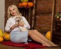 Mujer rubia feliz con el perrito fornido en un fondo de la cosecha del otoño Imagenes de archivo