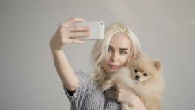 Mujer rubia hermosa que hace Selfie con su perro de Pomerania aislado en gris almacen de video