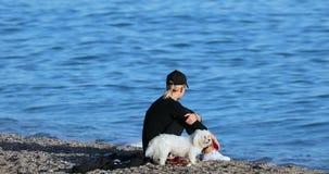 Mujer rubia joven hermosa con los perros en la playa almacen de video