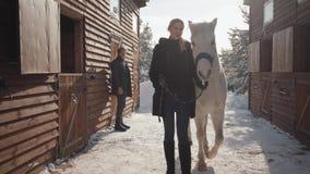 Mujer rubia positiva que lleva su caballo con el cuello principal en el rancho del invierno de la nieve Hombre barbudo en los vid almacen de metraje de vídeo