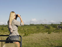 Mujer rubia que mira a través de los prismáticos en jeep Imagenes de archivo