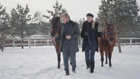 Mujer rubia y hombre que llevan dos caballos marrones que hablan en el rancho del invierno de la nieve Familia joven de amantes d almacen de metraje de vídeo