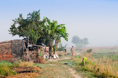 Mujer rural india que camina en la niebla Imágenes de archivo libres de regalías
