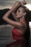 Mujer sensual hermosa solamente en piscina del infinito Fotografía de archivo