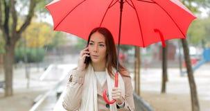 Mujer seria que habla en el teléfono debajo de la lluvia almacen de video