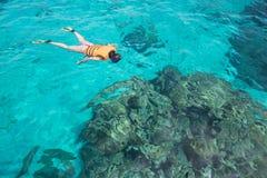 Mujer snorkling en la isla de Similan Mar de Andaman Tailandia, gran f Foto de archivo libre de regalías