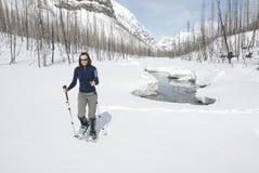 Mujer snowshoeing en los rockies canadienses Fotos de archivo