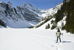 Mujer snowshoeing en los rockies canadienses Foto de archivo libre de regalías