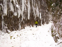 Mujer sola que camina a lo largo de una trayectoria de la montaña Foto de archivo libre de regalías