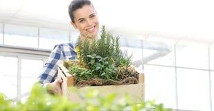 Mujer sonriente con la caja de madera por completo de hierbas de la especia en el fondo blanco, jardín de la primavera imagen de archivo