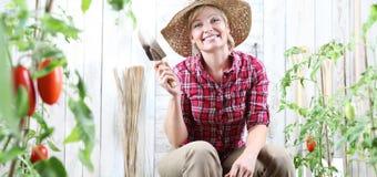 Mujer sonriente en el huerto, mostrando la herramienta de la paleta de jardín en fondo de los tomates de cereza fotos de archivo libres de regalías
