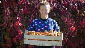 Mujer sonriente joven con una cosecha de zanahorias en una caja de madera en sus manos almacen de metraje de vídeo