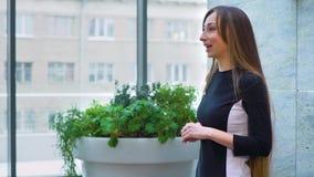 Mujer sonriente que da una charla del negocio sobre la reunión corporativa con el espacio libre almacen de metraje de vídeo