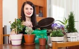 Mujer sonriente que trabaja con las flores en potes Fotografía de archivo libre de regalías