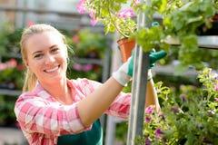 Mujer sonriente que trabaja en el centro de jardinería soleado Imagen de archivo