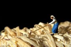 Mujer trabajadora foto de archivo libre de regalías