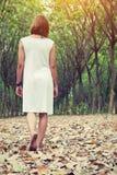 Mujer triste que camina solamente en el bosque que siente triste y solo Fotos de archivo libres de regalías
