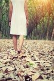 Mujer triste que camina solamente en el bosque que siente triste y solo Imagen de archivo libre de regalías