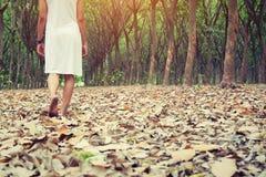 Mujer triste que camina solamente en el bosque que siente triste y solo Fotografía de archivo