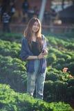 Mujer turística de Asia en la granja vegetal en la montaña Thaila del angkhang Fotos de archivo