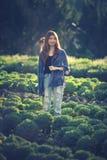 Mujer turística de Asia en la granja vegetal en la montaña Thaila del angkhang Imagenes de archivo