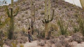 Mujer turística hermosa joven de la cámara lenta que mira detrás la cámara entre las plantas gigantes del cactus del Saguaro en e metrajes