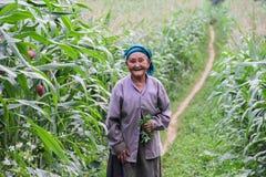 Mujer vietnamita en el norte de Vietnam Imagen de archivo