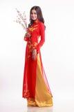 Mujer vietnamita hermosa con ao rojo dai que sostiene la flor de cerezo Imagen de archivo