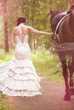 Mujer y caballo foto de archivo
