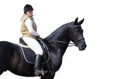 Mujer y caballo negro Imagenes de archivo