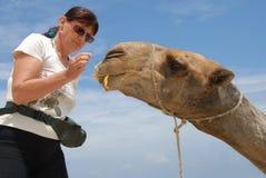 Mujer y camello Foto de archivo libre de regalías