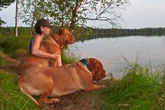 Mujer y dos perros Imagen de archivo libre de regalías